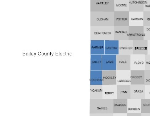 Bailey County Electric